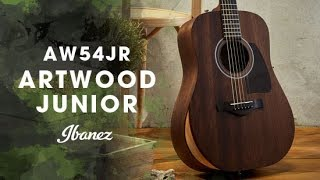 Ibanez Acoustic Artwood Junior - AW54JR