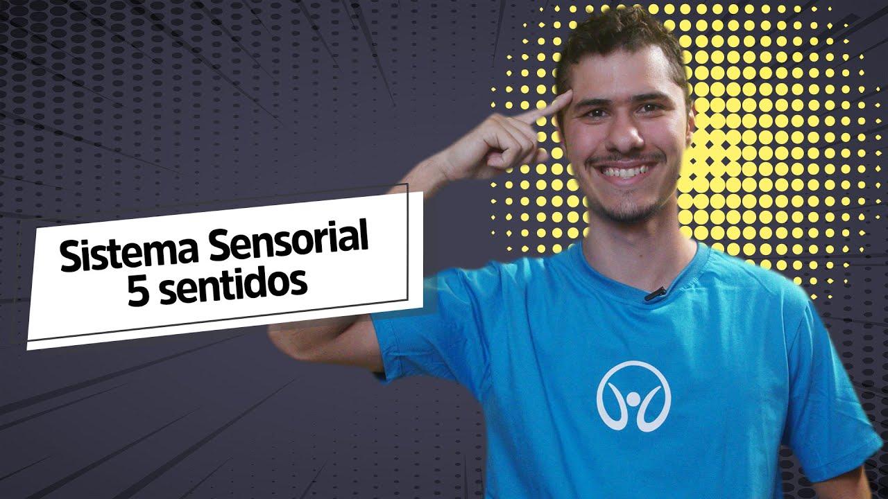 Sistema Sensorial: Cinco Sentidos