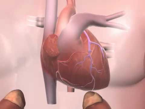 Médicaments pour réduire la tension artérielle