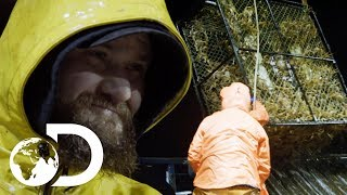Northwestern Team Capture Staggering Amount Of King Crab | NEW Deadliest Catch