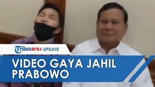 Viral Video Aksi Jahil Prabowo Subianto Lihat Stafnya yang Tertidur, Bikin Perekam Tertawa