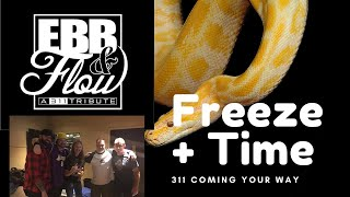 Ebb n Flow covers Freeze Time by 311