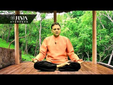 डॉ प्रताप चौहान द्वारा जीवानंद ध्यान प्रक्रिया