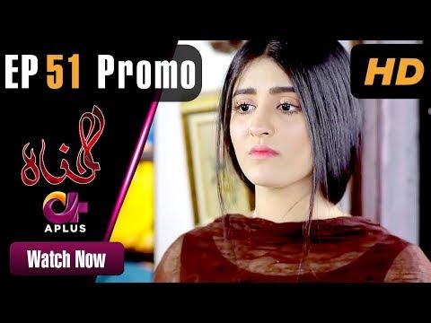 Pakistani Drama | Gunnah - Episode 51 Promo | Aplus Dramas | Sara Elahi, Shamoon Abbasi, Asad Malik