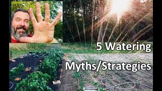 5 Garden Watering Myths & Strategies💧💦 and How to Water Your Garden - Teach a Man to Fish