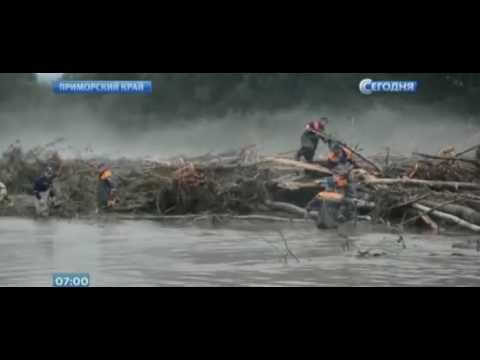 В Приморье 500 млн бюджетных рублей выделили на выплаты пострадавшим от паводка