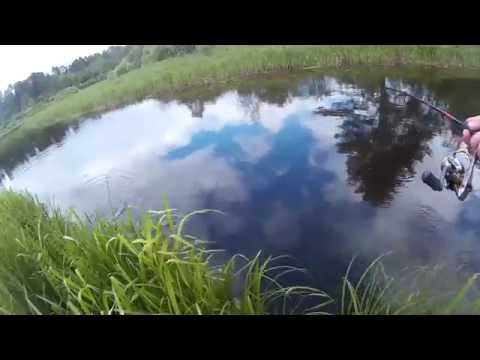 Video youtybe idP2k31ac_q8Y