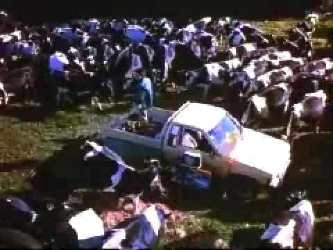 •+ Free Streaming The Price of Milk (2000)