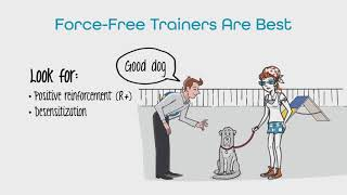 Not all dog trainers are the same