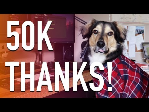 50K Subscribers - How To Make A Website For Dogs