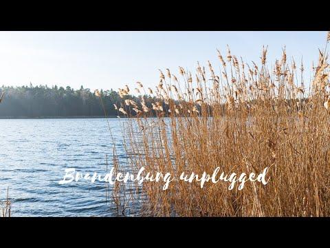 Brandenburg unplugged: Am Döllnsee in der Schorfheide