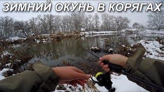 Поиск окуня зимой! Ловля окуня в корягах на спиннинг. Приманки для зимнего окуня