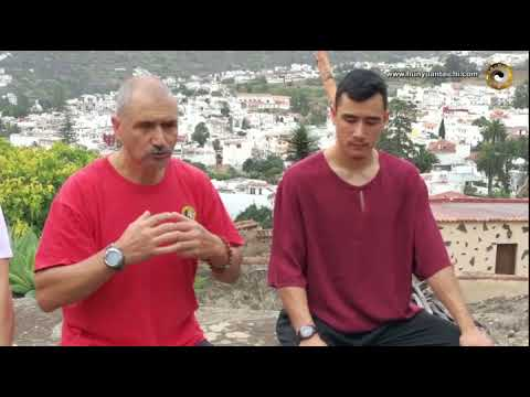 Qigong terapéutico o marcial ¿son diferentes?