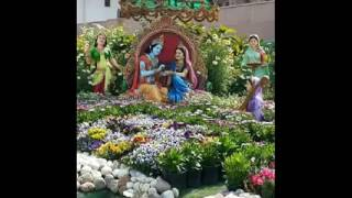 Best Krishna photo video