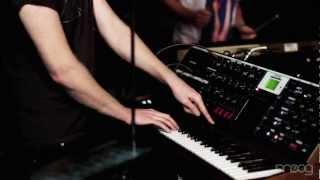 Little Dragon | Little Man | Moog Sound Lab