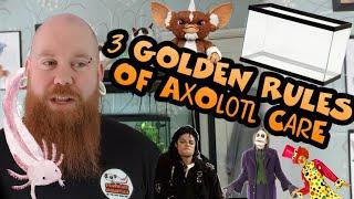 THREE GOLDEN RULES OF AXOLOTL CARE