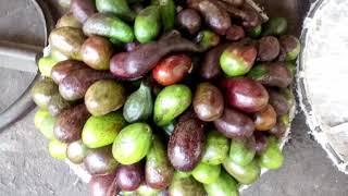 Идём по рынку Сом Мой, покупаем фрукты и пьём домашние компоты.