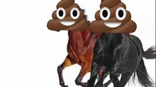 Old town road poopy 💩