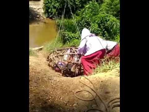 Viral Video Anak SD di Kampar Bergelantungan di Keranjang Seberangi Sungai, Ini Penjelasan Anggota DPRD Setempat