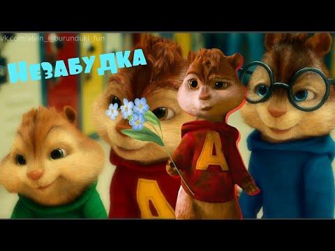 Незабудка. Chipmunks/Бурундуки. Музыкальное видео/Music video.