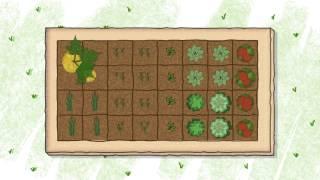 How to Start a Vegetable Garden: The Basics