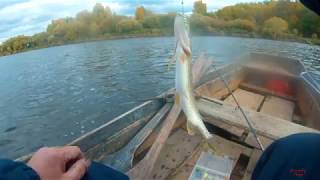 Рыбалка на реке унжа костромской обл