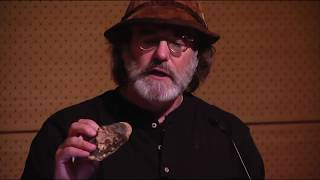 Paul Stamets: Mushrooms for People and Planet Ancient Allies for Modern Maladies