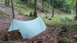 Live-Video: Gewitter-Routenplanung und schlafen mit den Rehen