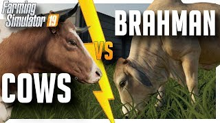 The difference between Cows and Brahman | Farming Simulator '19