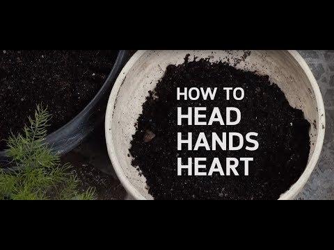 """เรียนรู้โลกธรรมชาติ ฝึก Heart Hands Head ใน """"เด็กเล็ก"""" ให้สมบูรณ์"""