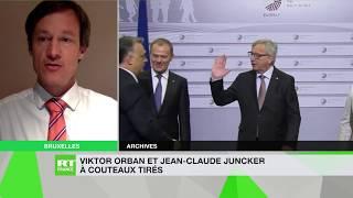 Drieu Godefridi : «Il est légitime pour les Hongrois de connaître les intentions de Bruxelles»