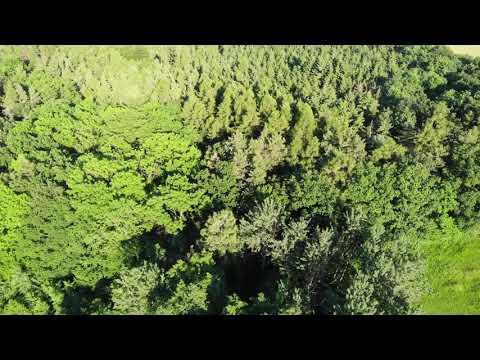 Video z << Prodej pozemku, 6282 m2, Olšany >>