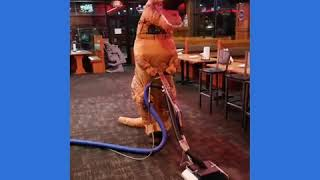 TRex's Cleaning Carpets With Zipper Wands!