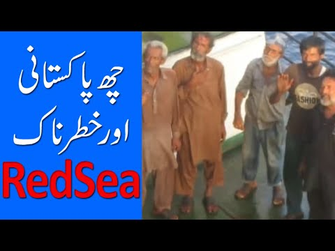 Pakistani Stranded in Red Sea | Sarim Burney Trust