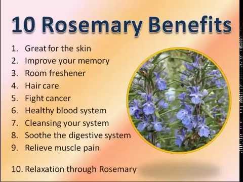 Video 10 Rosemary Benefits