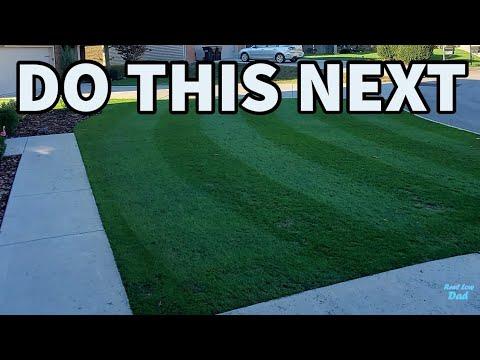Lawn Renovation   Preemergent – Fertilizer - Growth Regulator   When to Use