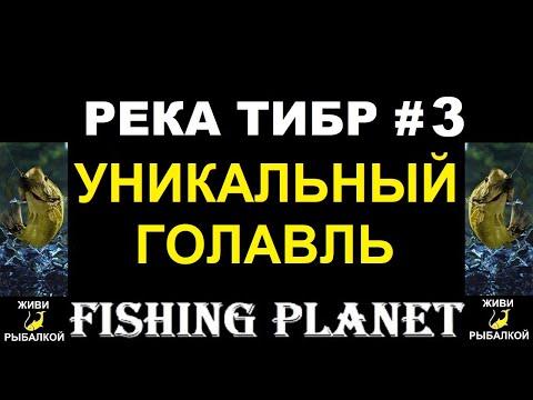 Река Тибр #3 - уникальный голавль Fishing planet