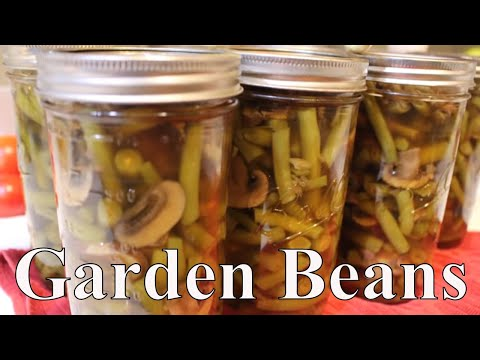 Canning Green Beans & Mushrooms With A Twist ~Linda's Pantry ~
