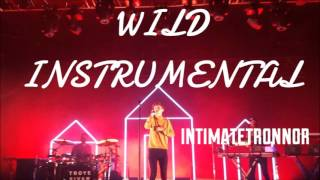 WILD   Troye Sivan (Official Instrumental)