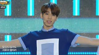 HALO - FEVER, 헤일로 - 체온이 뜨거워, Show Champion 20140806