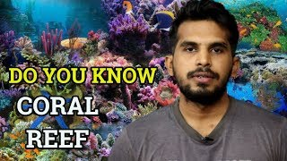 [In Hindi] What Are Coral Reefs ? |  Benefits Of Coral Reef | Ecology UPSC IAS Exam | CJTalk