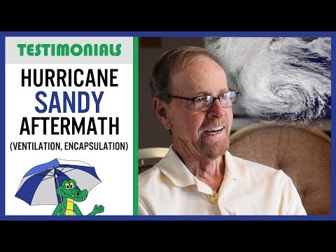 👉SUBSCRIBE if you liked this information and want more!👈