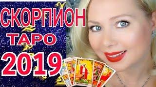 СКОРПИОН ТАРО ПРОГНОЗ на 2019 год от Olga Stella