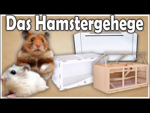Hamsterhaltung aber RICHTIG: Das Hamstergehege