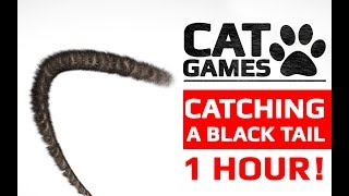 CAT GAMES - 😺 CATCHING A BLACK TAIL 1 HOUR VERSION (Entertainment Video for Cats to Watch)