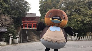 【ほぼ生配信】 近江神宮のおっさん