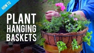 A Guide To Hanging Basket Plants & Flowers