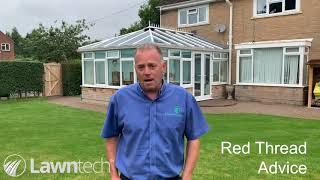 Red Thread Advice - UK Lawns