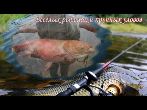 С днем рождения, рыбак!