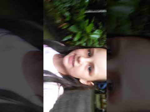 Vlog em Angelina -Silviane Kuhnen